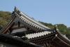 Japan_2015-138
