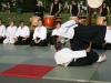 Kirschbluetenfest_2007-022